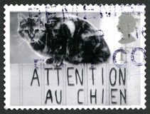 Attention Au Chien UK Postage Stamp. GREAT BRITAIN - CIRCA 2001: A used postage stamp from the UK, depicting an image of a Cat sitting above a sign, circa 2001 Royalty Free Stock Images