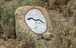 Attention au serpent ! Photo libre de droits
