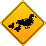 attention duck Royalty Free Stock Images