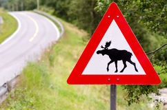 Attention elks crossing Stock Photos