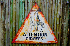 Attention girafes - giraffes triangle road sign. Attention girafes - Watch giraffes triangle road sign stock image