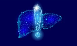 Attention health warning exclamation point liver low poly. Alert dangerous medicine disease risk cirrhosis safety. Protect concept. Blue triangle point line Stock Photos
