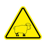 Attention of sheep. Caution farm is an animal.  Stock Photos