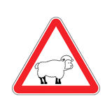 Attention of sheep. Caution farm is an animal. Red prohibitory r Royalty Free Stock Image