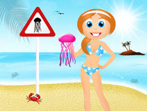 Attention to jellyfish Stock Images