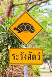 Attention tortoise crossing road sign. On road side stock photography