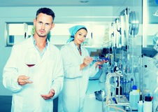 Attentive adult man testing wine qualities. Attentive adult men testing wine qualities in manufactory chemical laboratory Royalty Free Stock Photos