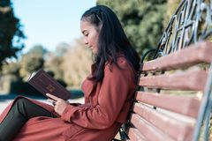 Attentive brunette girl sitting in semi position. Relax in park. Cheerful girl bowing head while reading book while having break in park royalty free stock photos