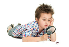 Attentive little boy with weird. Hair researching the bug using magnifier isolated on white Stock Photography