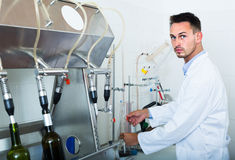 Attentive man making tests in wine manufactory laboratory Royalty Free Stock Photos