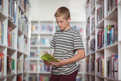 Attentive schoolboy reading book in library. At school Royalty Free Stock Images