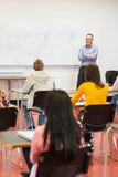 Attentive students with teacher in the classroom. Rear view of students attentively listening to male teacher in the classroom Royalty Free Stock Photos