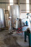 Attentive technician operating a machine. In oil factory Stock Photos