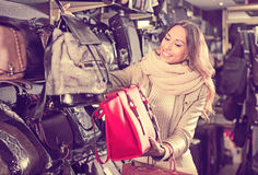 Attentive woman buying leather purse in shop Stock Photos