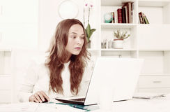 Attentive young female working on laptop in office Royalty Free Stock Photo