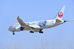 Atterraggio di Japan Airlines Boeing 787-846 Dreamliner JA828J a Pechino, Cina Fotografia Stock Libera da Diritti