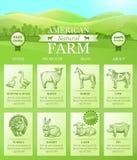 Atterrissage américain de ferme pour le site Web avec le paysage lumineux, silhouettes d'animaux de ferme Photos stock