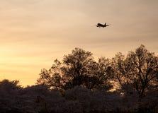 Atterrissage d'aéronefs à l'aéroport de Reagan Photographie stock libre de droits