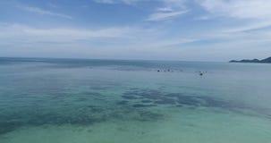 Atterrissage de bourdon sur la plage sablonneuse clips vidéos