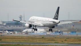 Atterrissage de Turkish Airlines Airbus A320 clips vidéos