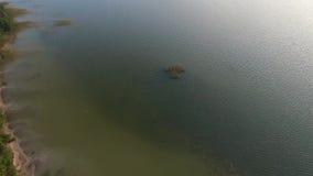 Atterrissage lent au-dessus du lac banque de vidéos