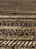 Atterrissez la saleté du fermier en automne avec des pistes de pneu Photos libres de droits