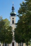 ATTERSEE, SALZKAMMERGUT/AUSTRIA - 9月18日:观点的猫 库存图片