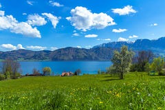 Attersee, Nussdorf 2. Lake Attersee seen from meadows in Nussdorf Royalty Free Stock Image