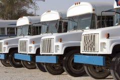 Attesa dei bus Fotografie Stock