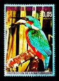 Atthis comuni del Alcedo del martin pescatore, serie europeo degli uccelli, circa 1976 Fotografia Stock Libera da Diritti
