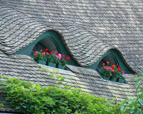 Attic windows. With geranium containers. grey black shingles, green ivy Royalty Free Stock Image
