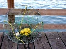 Attirails de pêche Photographie stock