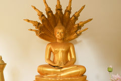 The attitude of meditation. In the temple royalty free stock image