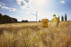 Attivista che protesta contro i cereali geneticamente modificati sul campo Fotografia Stock Libera da Diritti