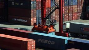 Attività del porto di commercio del mare di Vladivostok stock footage