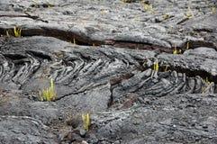 Attività del vulcano, Hawai, U.S.A. Fotografie Stock Libere da Diritti