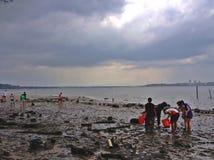 Attività della spiaggia - Singapore Fotografie Stock