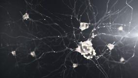 attività di un neurone 4K illustrazione di stock