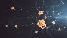 attività di un neurone 4K illustrazione vettoriale