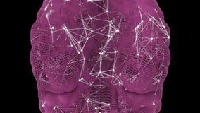 Attività di un neurone nel cervello umano royalty illustrazione gratis