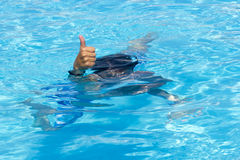 Attività sullo stagno. Nuoto del ragazzo e giocare in acqua i Fotografia Stock