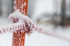 Atto del legare della corda rossa coperto dal fondo della sfuocatura della neve Fotografia Stock