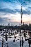 Attracchi il paesaggio del lago immagine stock