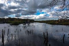 Attracchi il paesaggio del lago fotografie stock libere da diritti