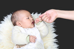 Attract the babys attention Stock Images