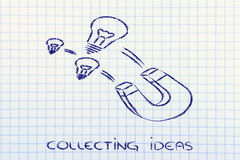 Attracting talents, funny magnet and lightbulb design Royalty Free Stock Images