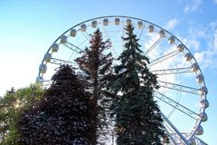 Attraction the Ferris wheel and trees in the amusement park Stock Images