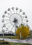 Attraction Ferris wheel with bright yellow autumn tree against t. He gray sky as a part of amusement park Royalty Free Stock Image