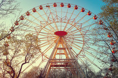 Attraction of the Ferris wheel in the park in the summer on a bright sunny afternoon Royalty Free Stock Photography