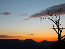 Attraction touristique en parc national de Grand Canyon, Etats-Unis image stock